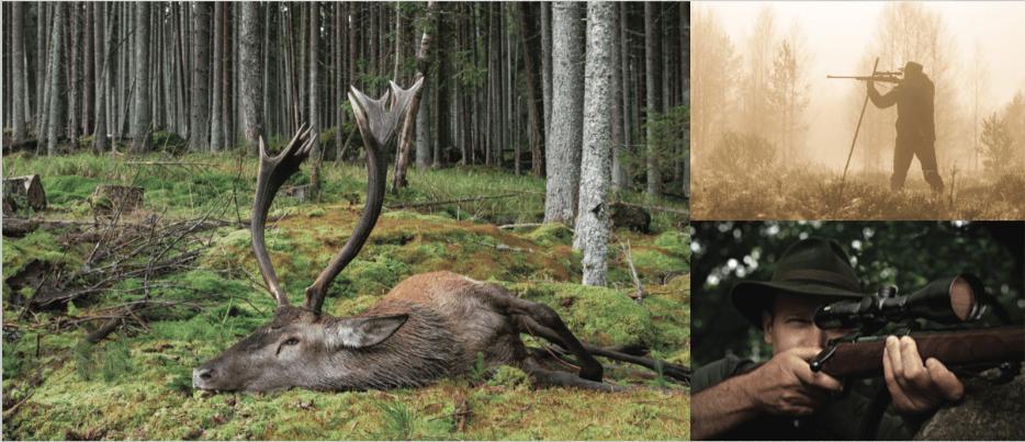 Meopta Ristikot & Meopta Tähtäinristikot